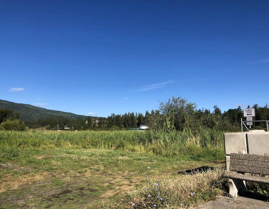 Deep Creek Wetlands Trail in Armstrong BC