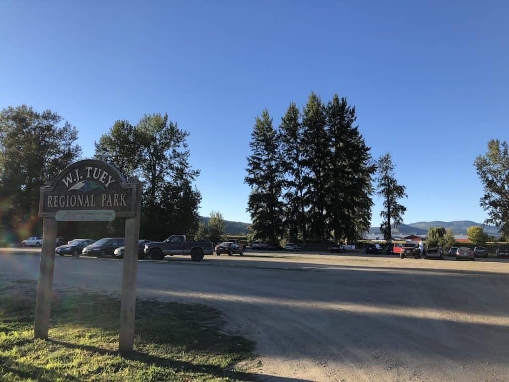 W.J. Tuey Regional Park - Enderby BC - River Beach - Shuswap River